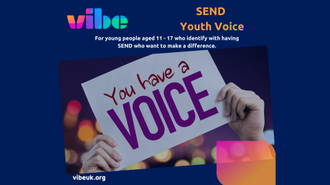 SEND Youth Voice at Vibe
